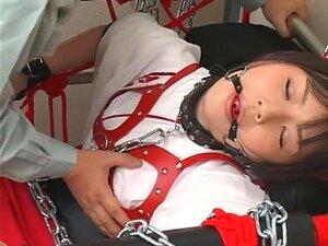 Vagabunda Japonesa Exótica Tsubomi No Fabuloso DildosToys, Cena BDSM JAV Porn