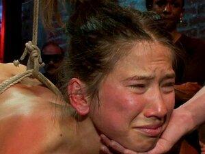 Sexo Em Grupo Brutal. As Prostitutas Deslumbrantes Estão A Ser Devoradas. Porn