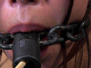 A Estrela Porno Japonesa Marica Hase Em  Metal Bondage  Porn