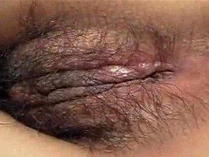 Vídeo Pornô De Graça Porn