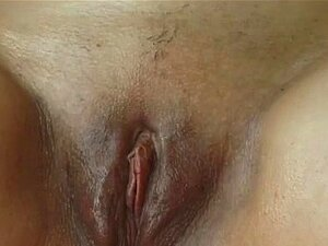 Grávida Com Tesão Obtém Pau Duro Porn