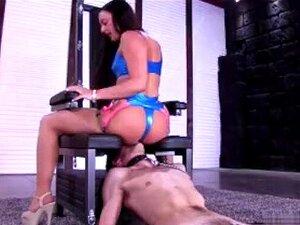 Femdom E Cumshot Da Morena Porn